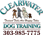Clearwater Dog Training
